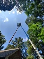 Prime Tree Service